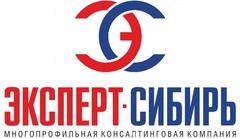 ЮК Сибирские Финансы