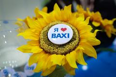 BAXI, ПФО