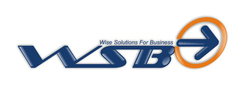 Wise Solutions For Business