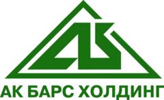 Управляющая Строительная компания Ак Барс