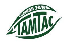 Тамтас, СООО
