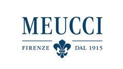 MEUCCI GROUP, Компания