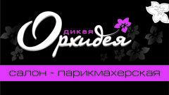 Салоны Дикая Орхидея/УП ТатВлад