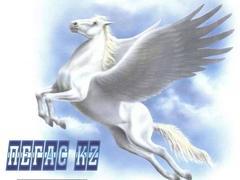 Пегас KZ, ТОО