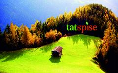 Татспайс