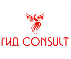 ГИД Consult