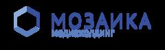 Мозаика, Медиахолдинг