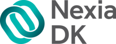 Nexia DK, Аудитори і консультанти