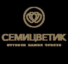 Семицветик Петербург