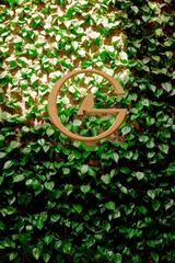 Сад и Огород