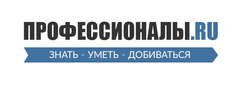 Профессионалы.ру, Компания