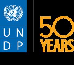 Программа развития Организации Объединенных Наций (ПРООН)