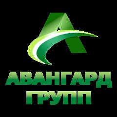 Авангард Групп