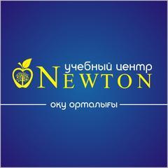 Ньютон, ИП