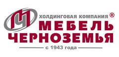 Мебель Черноземья, Холдинговая Компания