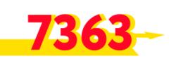 7363-АВТО