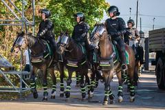 1-й оперативный полк полиции ГУ МВД России по г. Москве (1 кавалерийский батальон, 1 рота)