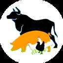 Мясной регион