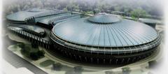 Государственное учреждение Чижовка-Арена