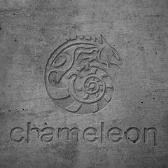 Дизайн студия Chameleon