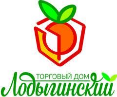 ТД Лодыгинский