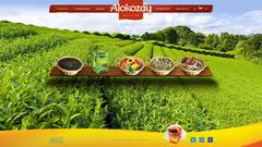 Alokozay Group, ООО, филиал Украина