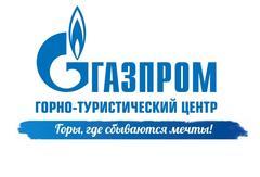 ООО «Свод Интернешнл» (ГТЦ ПАО «Газпром», ГК «Альпика», ГК «Гранд Отель Поляна», ГК «Поляна 1389 Отель и СПА», ОКЦ «Галактика», ЛБК «Лаура»)