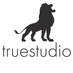 truestudio (Цабель А.А.)