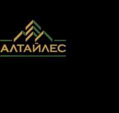 Алтайлес, Лесная холдинговая компания