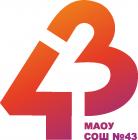 МАОУ СОШ 43