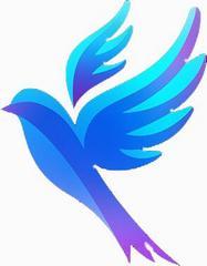 Студия иностранных языков Синяя Птица