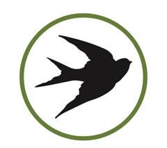 Птица-Медиа