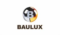 Баулюкс, Группа компаний