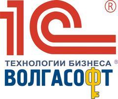 Волгасофт, Группа компаний