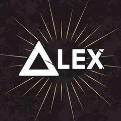 ALEX INFORMATION TECHNOLOGY