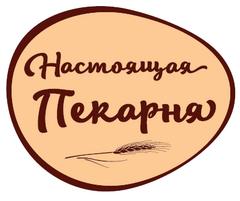 Кустов Андрей Николаевич