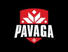 Павага Гейминг
