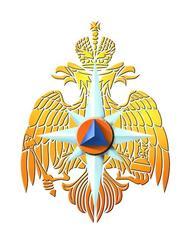 ФГКУ 19 отряд ФПС по Ленинградской области