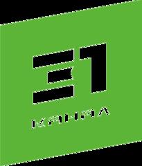 31 канал (Теле-радио компания)