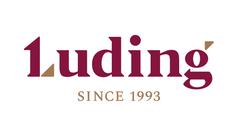 Лудинг