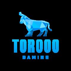 Torooo Gaming