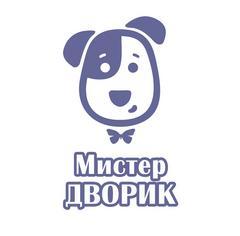 Мистер ДВОРИК