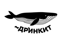 Никитина Анастасия Алексеевна