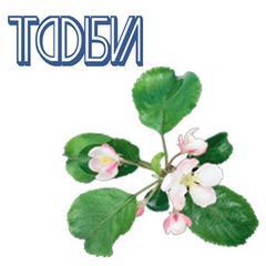 Тюменская фабрика бумажных изделий