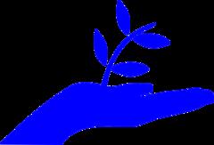 АНБО Инклюзивный центр раннего развития Росток надежды