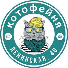Коткин Р.А.