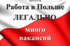 Петрович Н.М.