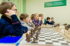 Шахматная школа Elsadchess