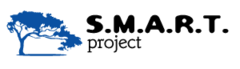 Смарт Проект
