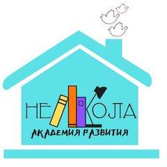 Академия развития НЕШКОЛА